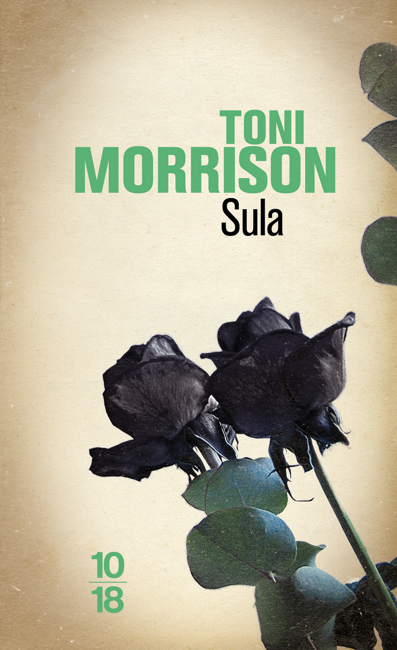 essay on sula by toni morrison