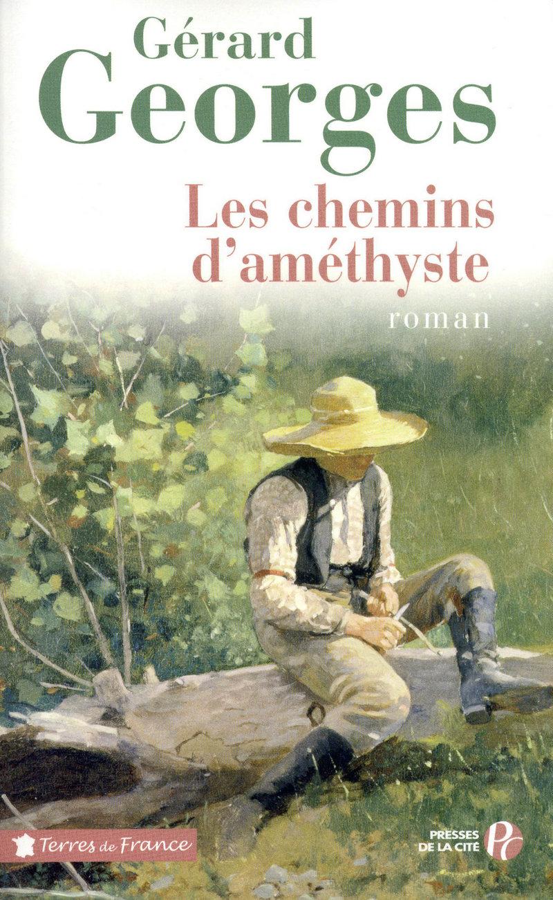 Couverture de l'ouvrage Les Chemins d'améthyste